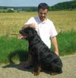 Fédération française du sport canin (FFSC)
