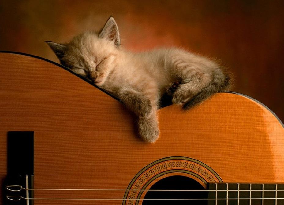 Guitare pour Tous